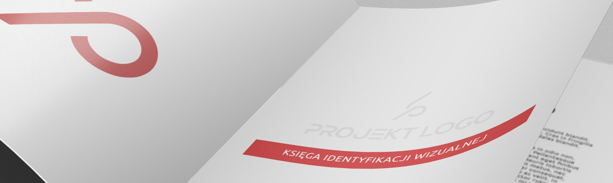 Corporate identity book Białystok, Warszawa